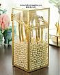 Hộp Đựng Cọ Ngọc Trai Chống Bụi Viền Vàng Golden